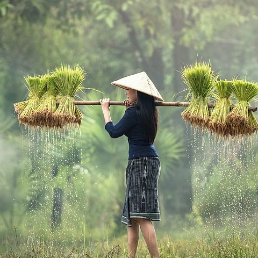 Mujer agricultora